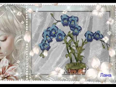 Бисероплетение Орхидея смотреть ролик орхидея из мастики мастер класс.